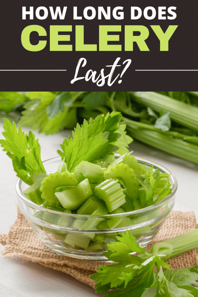 How Long Does Celery Last?