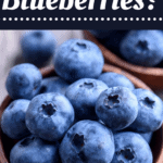 Can You Freeze Blueberries