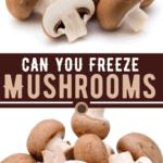 Can You Freeze Mushrooms