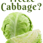 Can You Freeze Cabbage