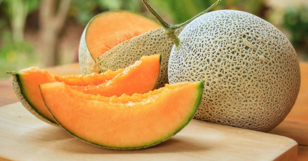 How To Tell If A Cantaloupe Is Ripe Insanely Good Free cantelope wallpapers and cantelope backgrounds for your computer desktop. how to tell if a cantaloupe is ripe