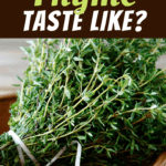 What Does Thyme Taste Like