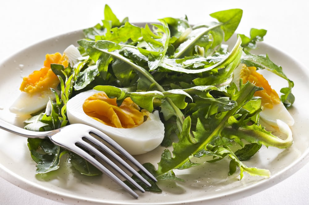 Dandelion Green Salad