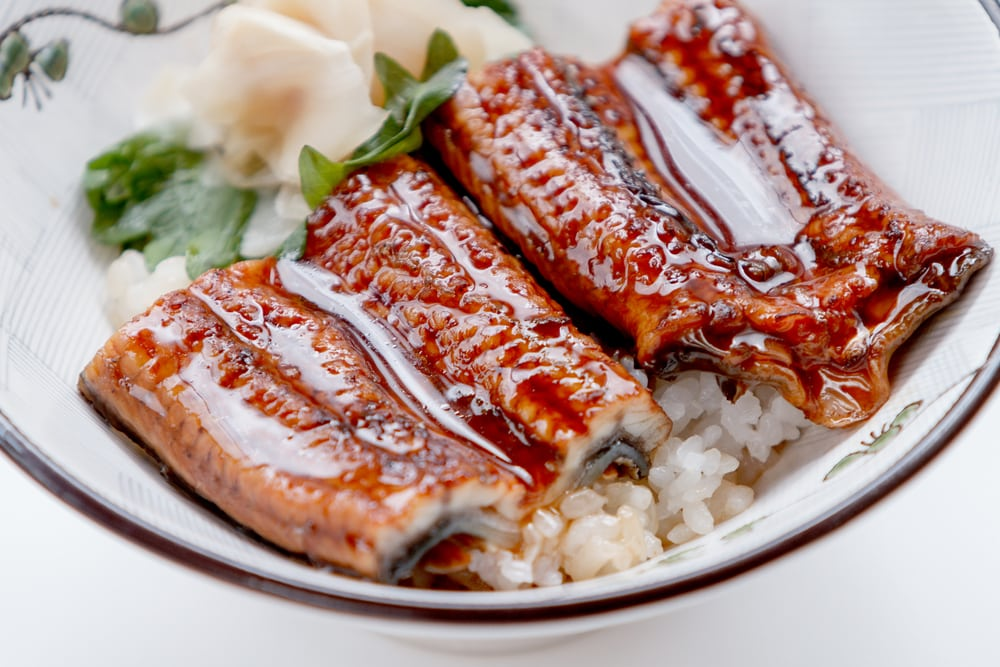 Grilled Eel Rice Bowl