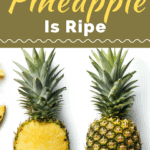 How To Tell If A Pineapple Is Ripe