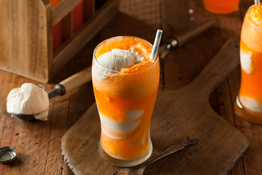 Ice Cream Soda or Ice Cream Float