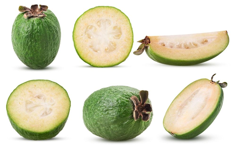 Feijoa Fruit
