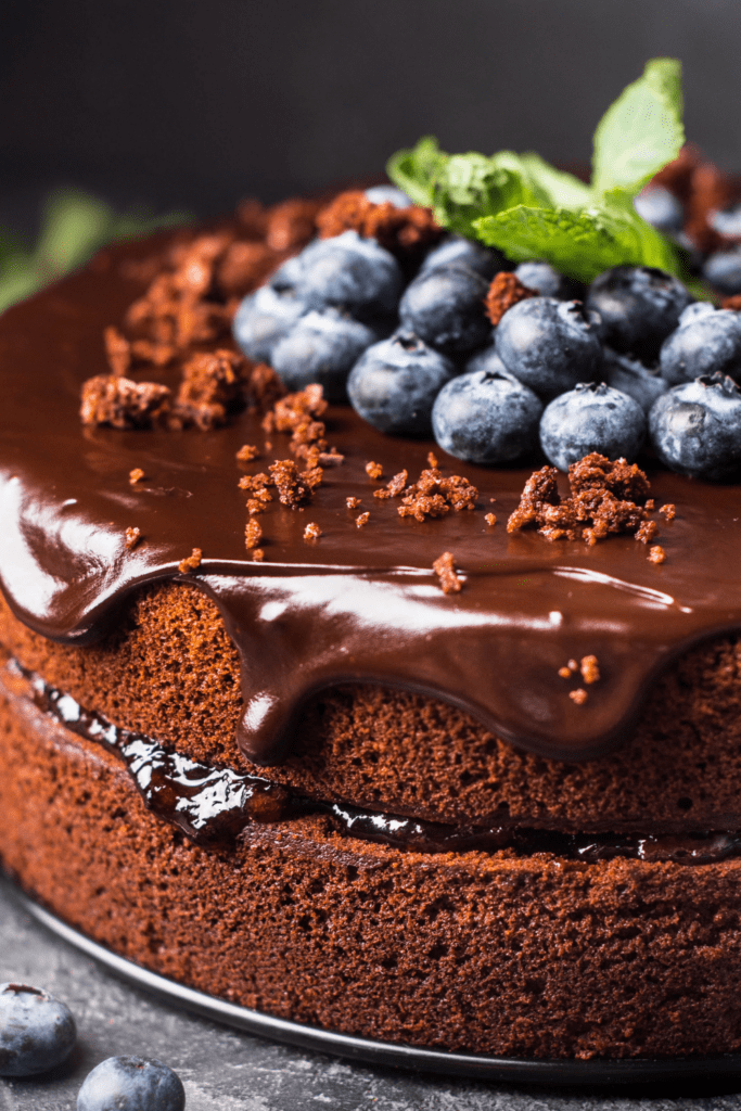 Homemade Chocolate Cake with Blueberry Toppings