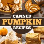 Canned Pumpkin Recipes