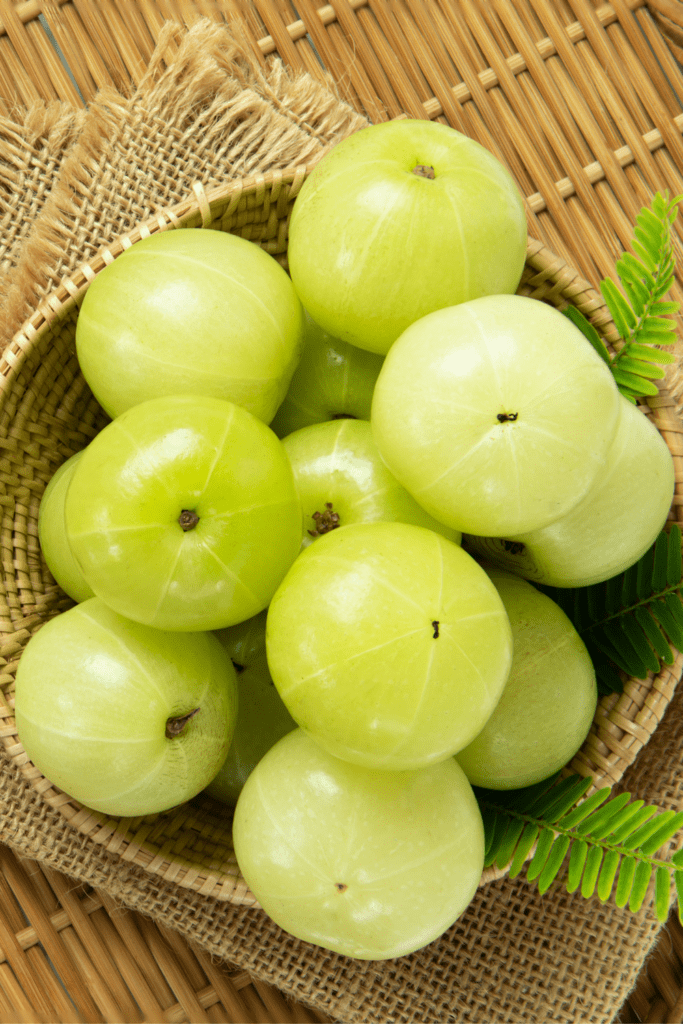 Fresh Emblica Fruit