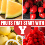 Fruits that Start with Y