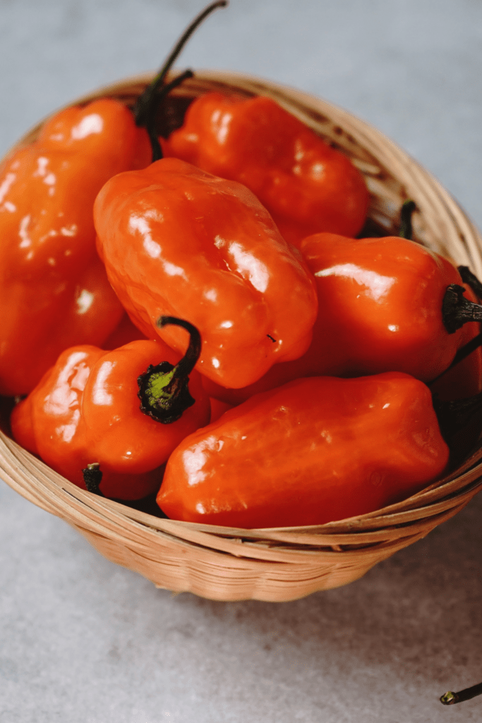 Habañero Peppers in a Small Basket