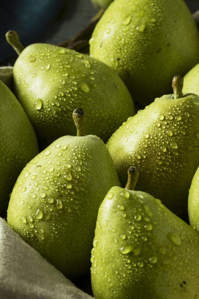 Fresh Green Anjou Pears