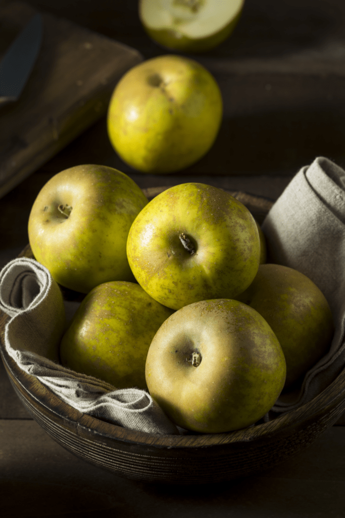 Knobby Russet Apples