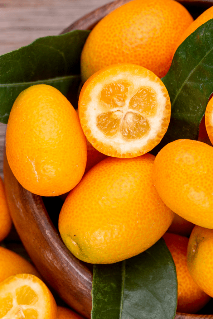 Orange Kumquats or Jin Ju