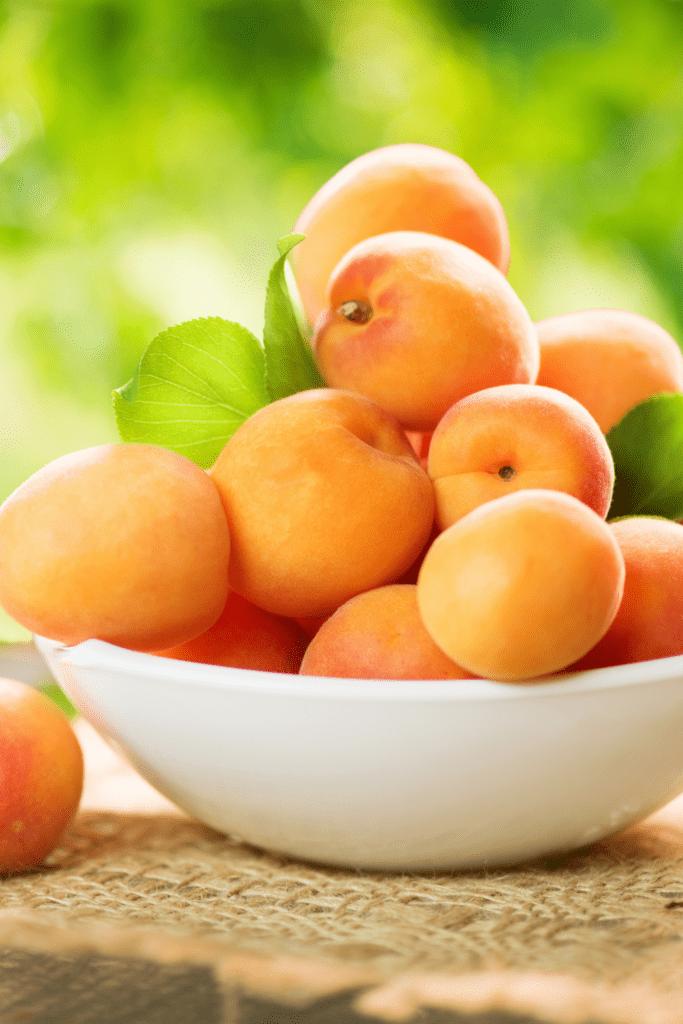 Raw Organic Apicots