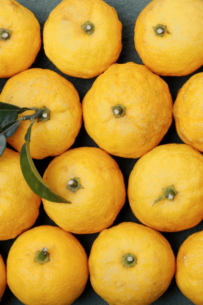 Japanese Yuzu Fruits