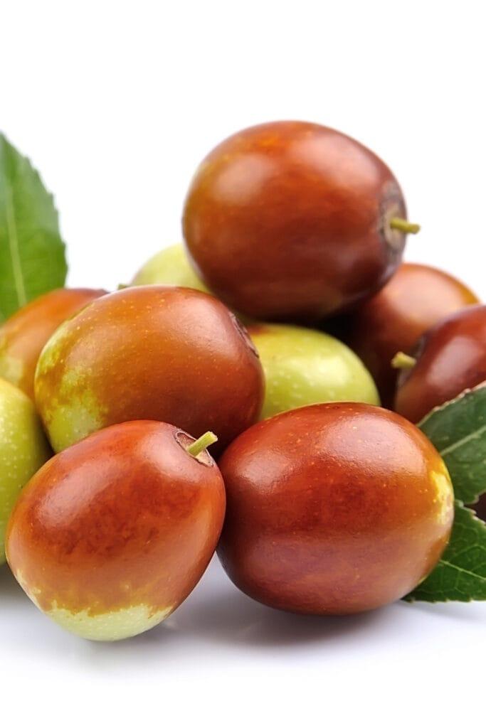 Ziziphus Fruit or Jujube Fruit