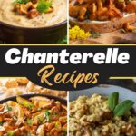 Chanterelle Recipes