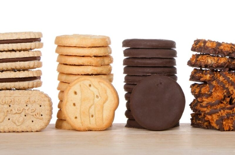 10 Copycat Girl Scout Cookie Recipes