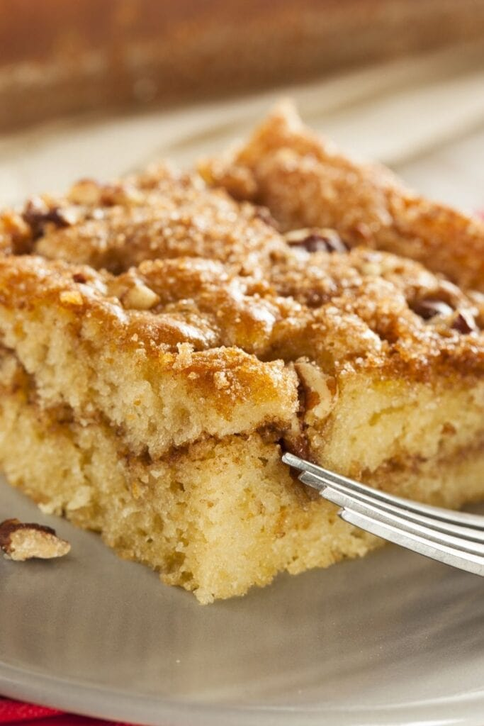 Moist and Chewy Snickerdoodle Coffee Cake